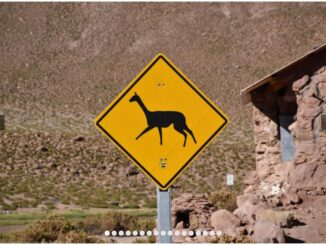 CHILE - JOURNEY OF DISCOVERY THROUGH THE ALTIPLANO