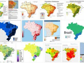 Distribution of the Brazilian Population