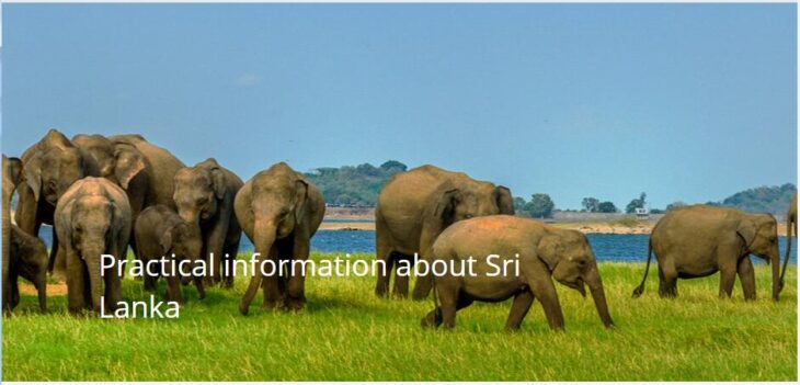 Practical information about Sri Lanka