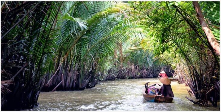 Sail under coconut palms in the Mekong Estuary