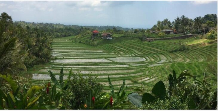 Travel story from Bali 2